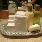 toiletries refreshed daily