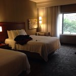 Billede af Courtyard by Marriott Pittsburgh Shadyside