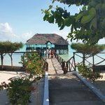 Reef & Beach Resort Zanzibar의 사진