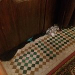 We had to stuff clothing under front door to prevent more roaches from entering
