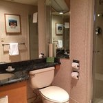 one of our 2 bathrooms that had a walk in shower