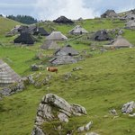 Photo of Velika Planina