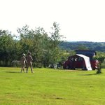 Acorns Naturist Retreat의 사진
