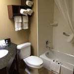 Bilde fra AmericInn Lodge & Suites Madison West