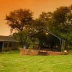 Foto de Bushwillow Tented Camp