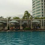 Swimming pool area for adult