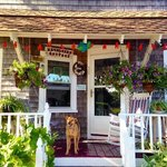 Kathleen's Kottage on Martha's Vineyard resmi