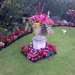 Awarded 1st Prize by Southport Flower Show