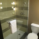 Φωτογραφία: Holiday Inn Toronto Downtown Centre