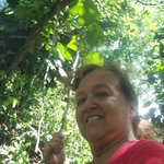 There are some short hikes into the tropical vines. I posed like Jane of the jungle.