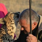 Cheetahs best friend