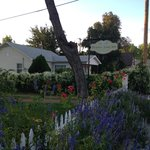 Foto Purple Sage Inn