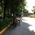Carriage ride in Fort Santiago