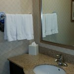 Foto de Holiday Inn Express Hotel & Suites Riverport
