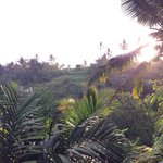 Φωτογραφία: Bidadari Private Villas & Retreat - Ubud