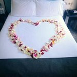 Rose petals which I asked to be scattered over the bed, instead they went to extra lengths and d