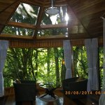 Hidden Canopy Treehouses Boutique Hotel resmi