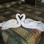 Swans in the master bedroom