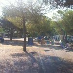Photo de Camping El Garrofer