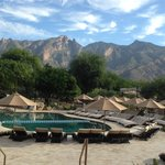 Westin La Paloma Resort and Spa resmi