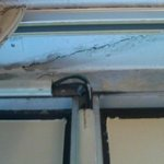 Exposed wiring and mold above window