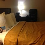 Foto de Quality Inn & Suites Elk Grove Village