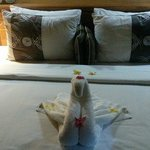 Welcome Swan towel :)