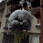 The hanging basket in hotel entrance after snowstorm