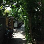 Small lane leading to Frangipani. The bungalow is on the left