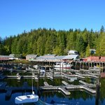 Photo of Telegraph Cove Resort