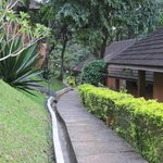 ABAD Green Forest Resort Foto