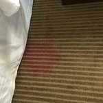 Stained carpet by bed
