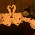 Mindry made incredible towel animals.