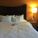 Φωτογραφία: Fairfield Inn & Suites Buffalo Airport