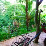 Chill out in a hammock and listen to the afternoon rain and the sounds of the jungle