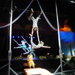Circus show - do not miss!