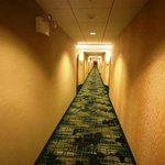 SpringHill Suites North Shore照片