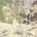 Lava rocks galore on the way up to Roque Nublo