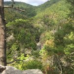 Looking down into Linville River Gorge