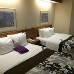 Sleep Inn & Suites照片