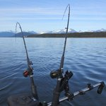 Juneau Sport Fishing - Private Day Activities