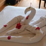 Towel art, compliments of the young lad who cleaned our room.