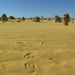 The Pinnacles Foto