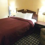 Clarion Inn & Suites Northwest Foto