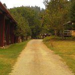 Marble Mountain Ranch - Family Guest Ranch Foto