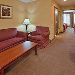 Φωτογραφία: Holiday Inn Express Maryville