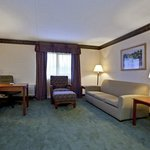 Photo de Holiday Inn Express Hotel & Suites Pittsburgh Airport
