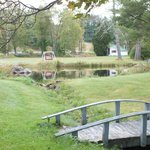 The pond & picnic area