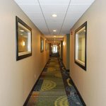 Holiday Inn Express Bloomington West Foto