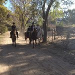 Riding the horses through the sugarcane fields on the Estancia